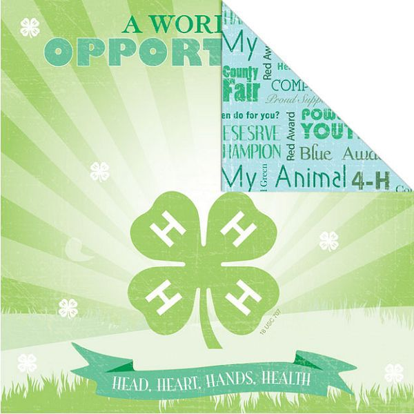 4-H Paper - Opportunity
