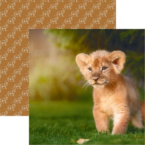 King of the Jungle: Lion Cub Paper