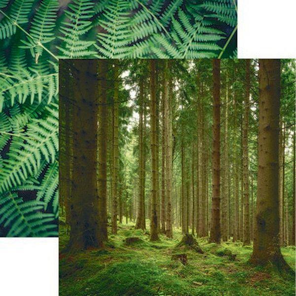 Scandinavian Woodland: Lush Nature Paper