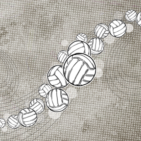 Volleyball essay